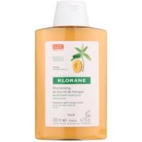 champú nutritivo para cabello seco