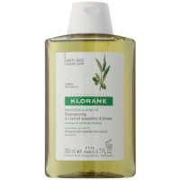 Shampoo with Essential Olive Extract