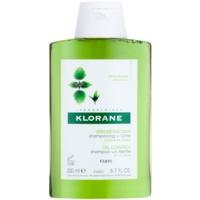 шампунь для жирного волосся