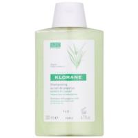 šampon pro suché a nepoddajné vlasy