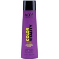 šampon pro blond a melírované vlasy