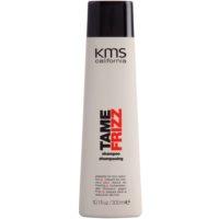 szampon przeciwko puszeniu się włosów