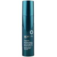 Moisturizing Shampoo For Dry Hair