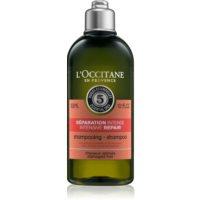 L'Occitane Aromachologie Regenierendes Shampoo für trockenes und beschädigtes Haar