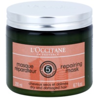Regenerating and Moisturising Hair Mask With Shea Butter