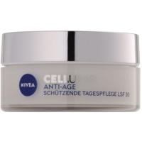 Day Cream For Skin Rejuvenation