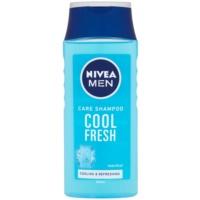 шампунь для нормального та жирного волосся