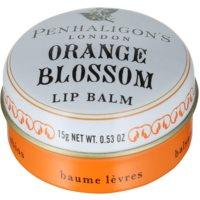 Lippenbalsam für Damen 15 g