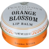 bálsamo labial para mulheres 15 g