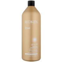 Shampoo For Dry And Brittle Hair