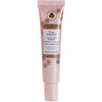 Radiance Moisturising Cream For Normal To Mixed Skin
