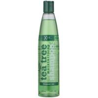 Moisturizing Shampoo For Everyday Use