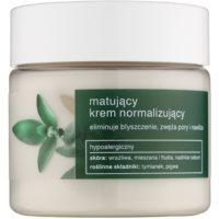 Tołpa Green Matt нормализиращ матиращ крем за мазна кожа