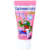 Vademecum Junior pasta de dientes para bebés y niños sabor fresa