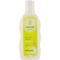 nährendes Shampoo mit Hirsen für normales Haar