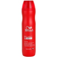 Shampoo For Coarse, Colored Hair