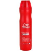 šampon pro hrubé, barvené vlasy