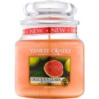 Yankee Candle Delicious Guava vonná sviečka 104 g Classic malá