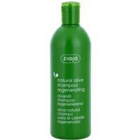 champô regenerador para todos os tipos de cabelos
