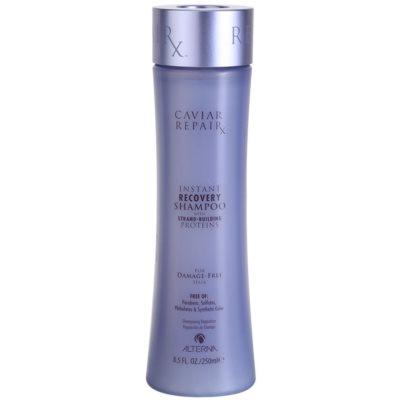šampon za takojšnjo regeneracijo