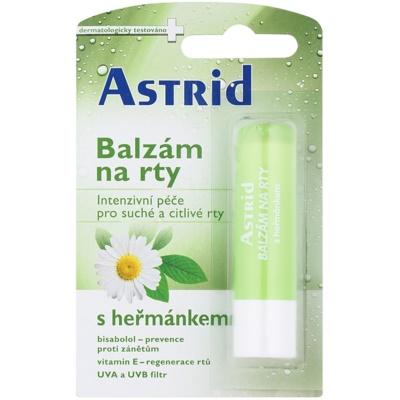 balsam de musetel pentru buze uscate si sensibile efect regenerator