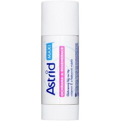 balsam de buze protector efect regenerator