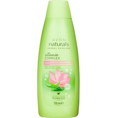 šampon in balzam 2 v1