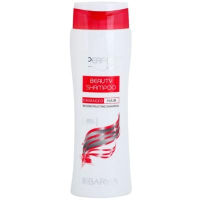 šampon za prestrukturiranje las za poškodovane lase