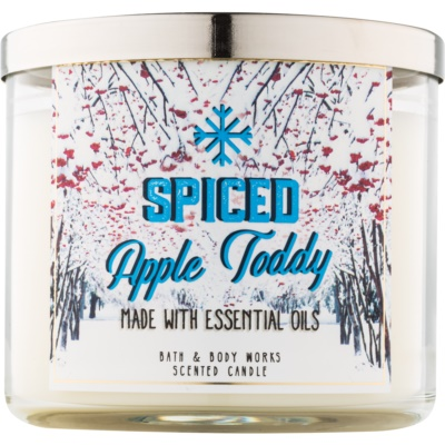 Bath & Body Works Camp Winter Spiced Apple Toddy lumanari parfumate