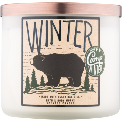 Bath & Body Works Camp Winter Winter Scented Candle