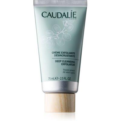 tiefenwirksames Reinigungspeeling für alle Hauttypen