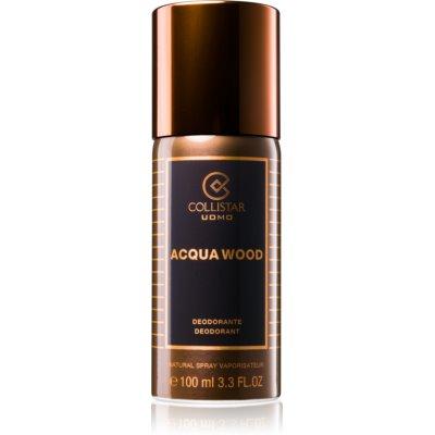 Collistar Acqua Wood Deo-Spray für Herren 100 ml