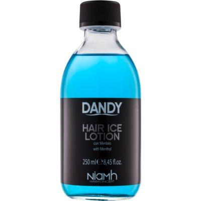 DANDY Hair Lotion θεραπεία για τα μαλλιά