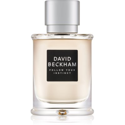 David Beckham Follow Your Instinct eau de toilette férfiaknak