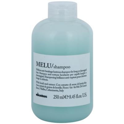 delikatny szampon do włosów słabych i zniszczonych