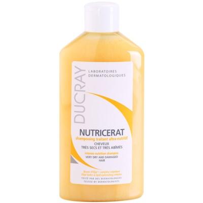 hranilni šampon za suhe lase