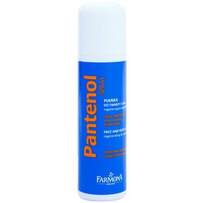 Farmona Panthenol mousse régénérante visage et corps