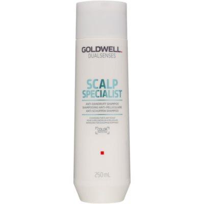 čisticí šampon proti lupům