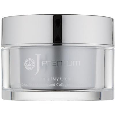 crema de zi cu efect de refacere cu minerale de la Marea Moarta