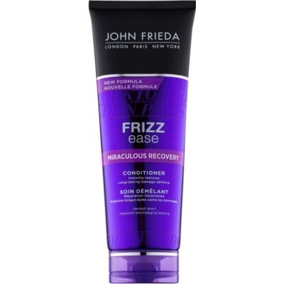 erneuernder Conditioner für beschädigtes Haar