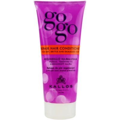 regenerační kondicionér pro suché a poškozené vlasy