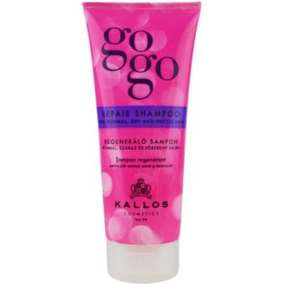 obnovujúci šampón pre suché a slabé vlasy
