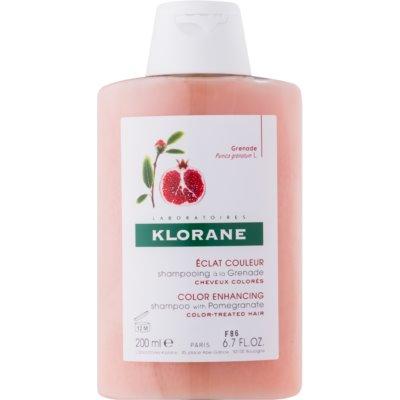 szampon do włosów farbowanych