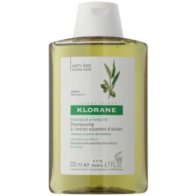 šampon s esenciálním výtažkem z oliv