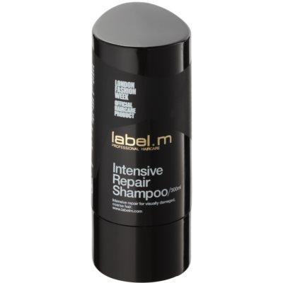 obnovující šampon pro poškozené vlasy