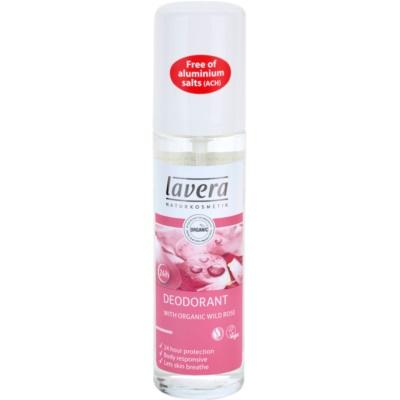 dezodorant v spreji