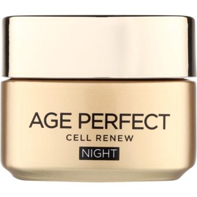 Nachtcreme für die Erneuerung der Hautzellen