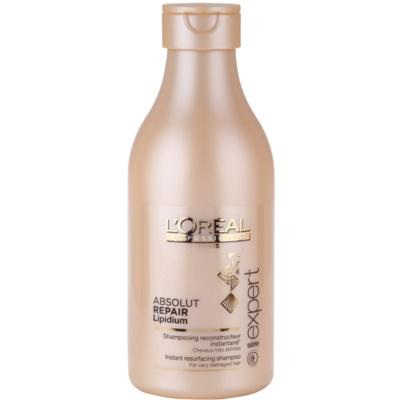 Shampoo mit ernährender Wirkung für stark geschädigtes Haar
