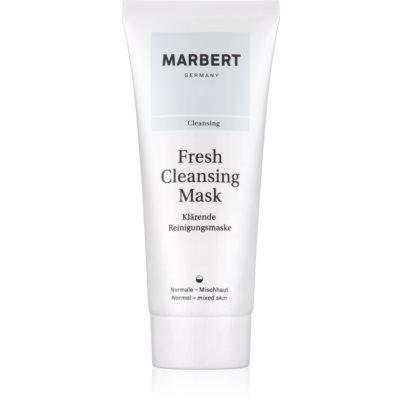 reinigende Gesichtsmaske mit Tonmineralien für normale Haut und Mischhaut