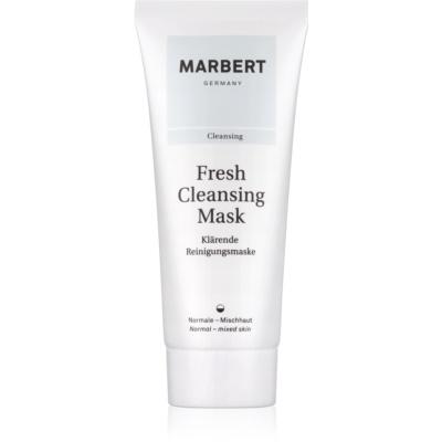 čisticí jílová pleťová maska pro normální až smíšenou pleť